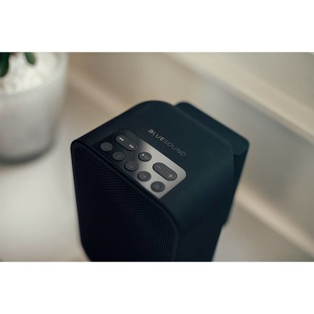 Bluesound Pulse Flex Battery Pack