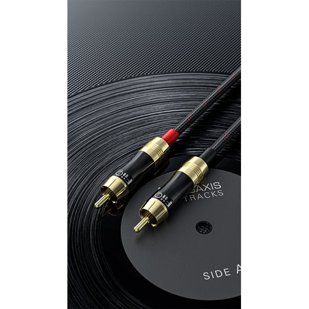 FiiO LR-RCA2