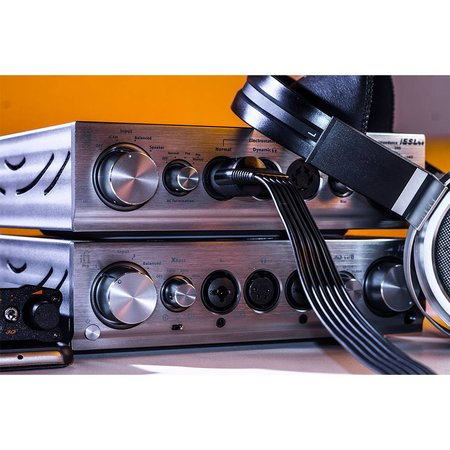 iFi Audio Pro iCAN - Outlet