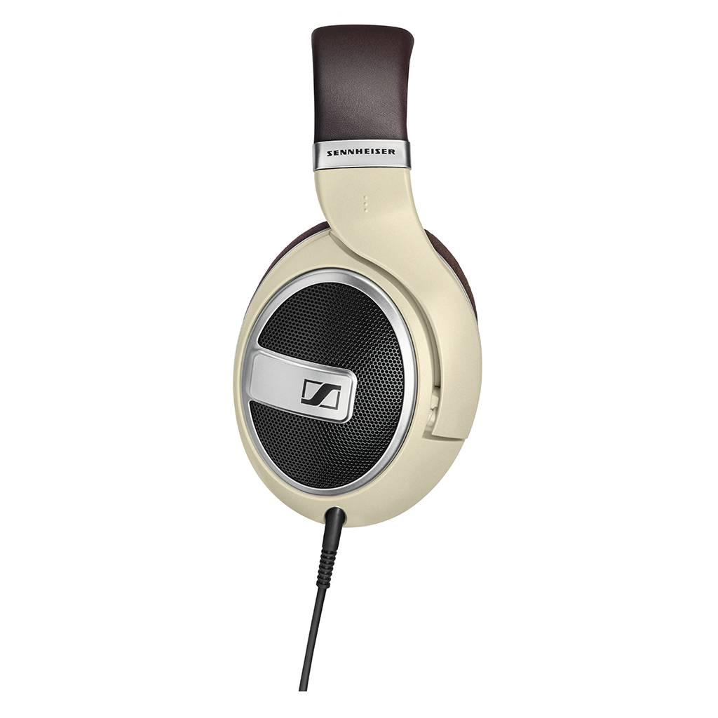 HD 599 + Gratis StashHead