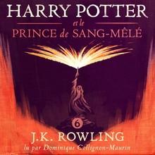 J.K. Rowling Harry Potter et le Prince de Sang-Mêlé - Livre 6