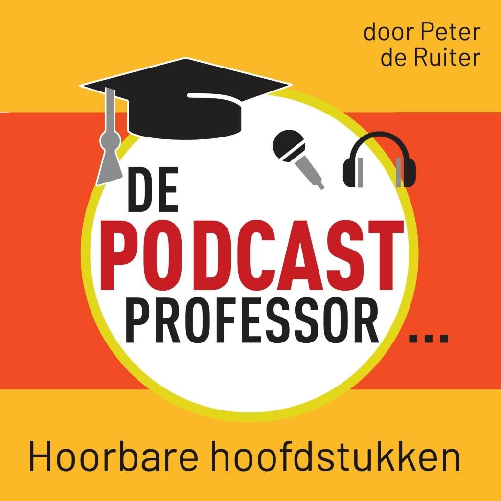 Peter de Ruiter De Podcast Professor
