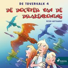 Peter Gotthardt De tovervalk 4 - De dochter van de drakenkoning