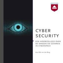 Bibi van den Berg Cyber security - Een hoorcollege over de kansen en gevaren in cyberspace