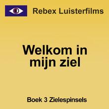 Rebecca Raadsen Welkom in mijn ziel - boek 3: Zielespinsels