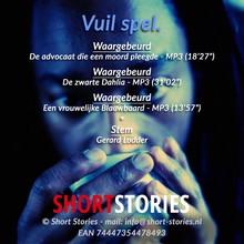 ShortStories Vuil spel