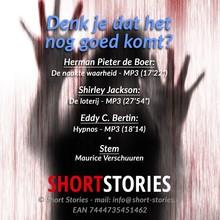 Herman Pieter de Boer Denk je dat het nog goed komt