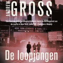 Andrew Gross De loopjongen