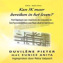 Duvilène Pieter Kan IK meer bereiken in het leven? - Het bijstaan van mannen en vrouwen in het herontdekken van hun doel in het leven