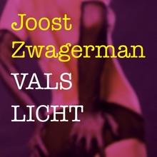 Joost Zwagerman Vals licht
