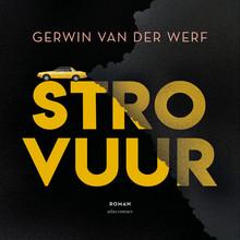 Gerwin van der Werf Strovuur