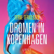 Terne Terkildsen Dromen in Kopenhagen - erotisch verhaal