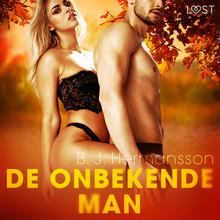 B.J. Hermansson De onbekende man - erotisch verhaal