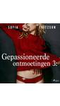 Meer info over Sofia Fritzson Gepassioneerde ontmoetingen 3: Jill - erotisch verhaal bij Luisterrijk.nl