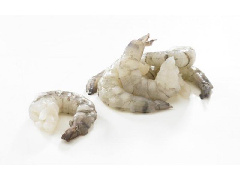 Gamba's black tiger middel, schoon 26-30 stuks (ca.800 gram)