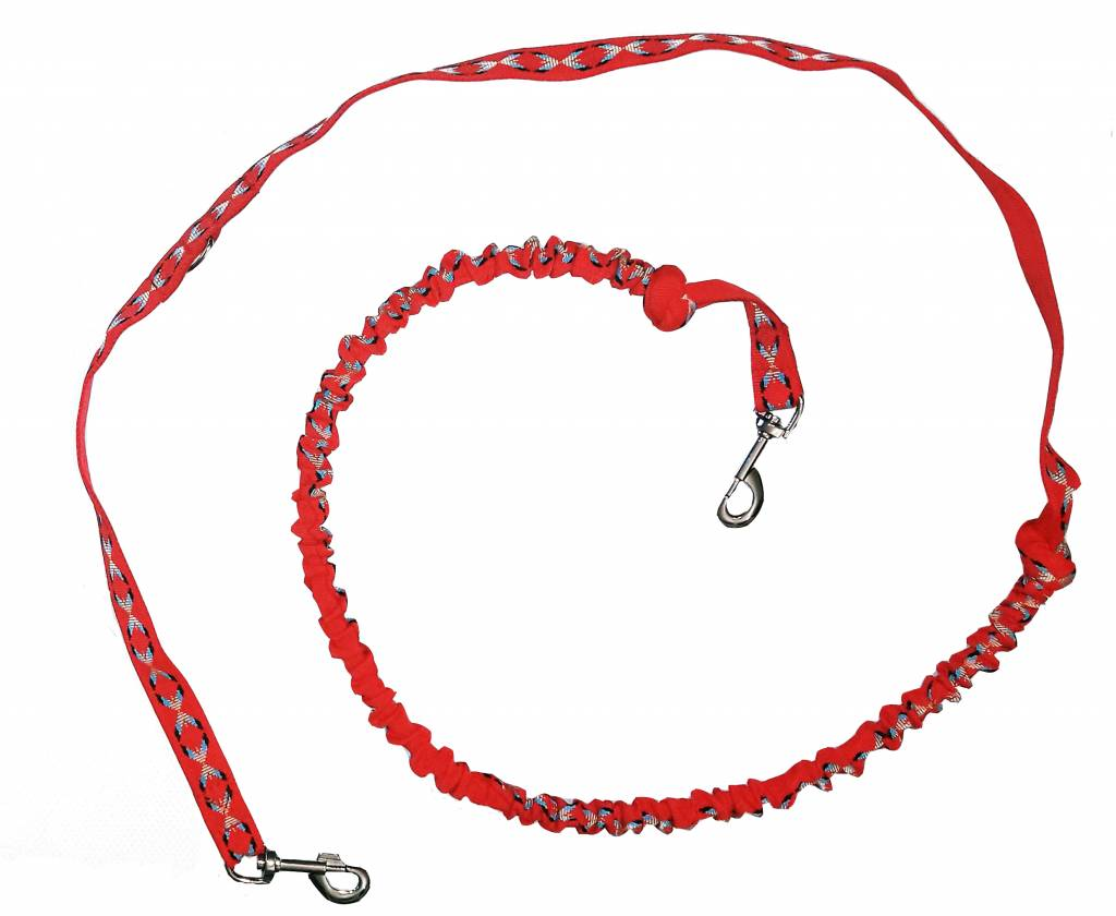Hands free Dog Leash with integrated Bungee - red