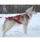 X-Back harnais pour chien pour le vélo, ski-joering, scooter, traîneau, Color rouge
