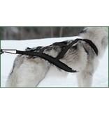 Northern Howl Northern Howl Hunde Zuggeschirr X-Back Schwarz für Zughundesport