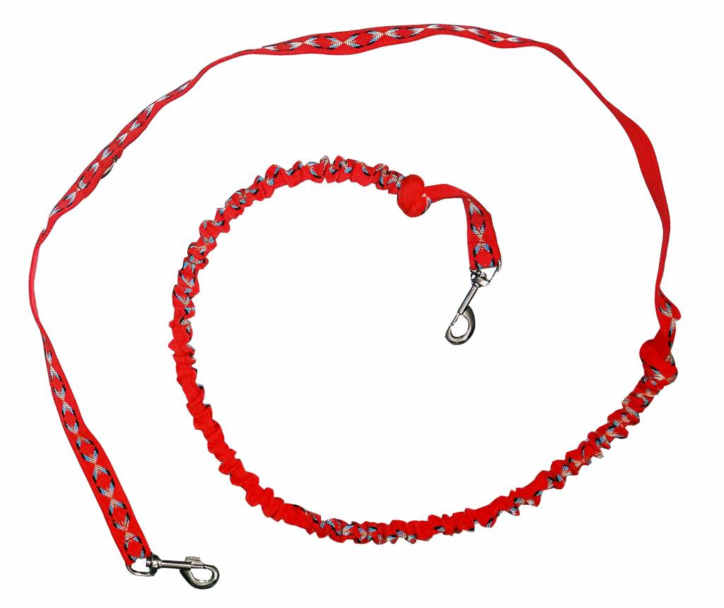 Weight Pulling Dog Harness, X - Back + Leash Style for Canicross, Bike, Sled, Scooter, Bike-, Ski-Joring, Jogging,... in red
