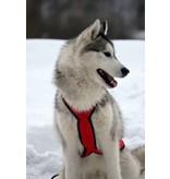 Hunde Zuggeschirr X Back Style inkl.Zugleine für Bike-,Ski-Joring,Scooter,Schlitten, jogging - Rot
