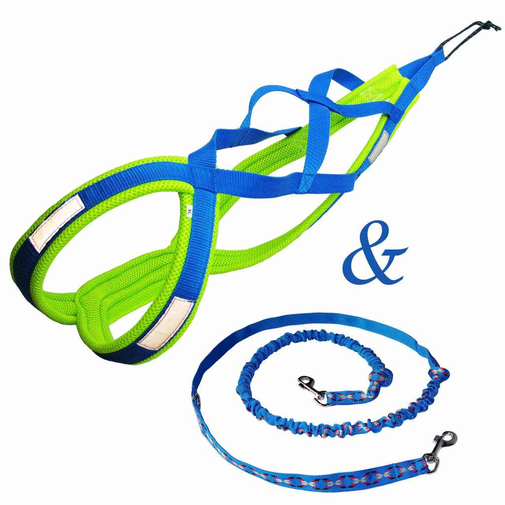 Weight Pulling Dog Harness, X - Back Style for Canicross, Bike, Sled, Scooter, Bike-, Ski-Joring, Jogging,... in Blue Neonyellow
