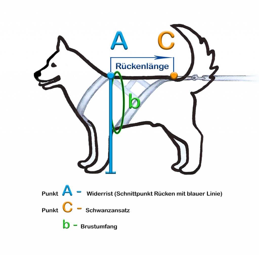 Northern Howl Canicross-Set, X-Back Zuggeschirr, Jöring- Leine - Blue