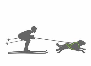 Skijöring