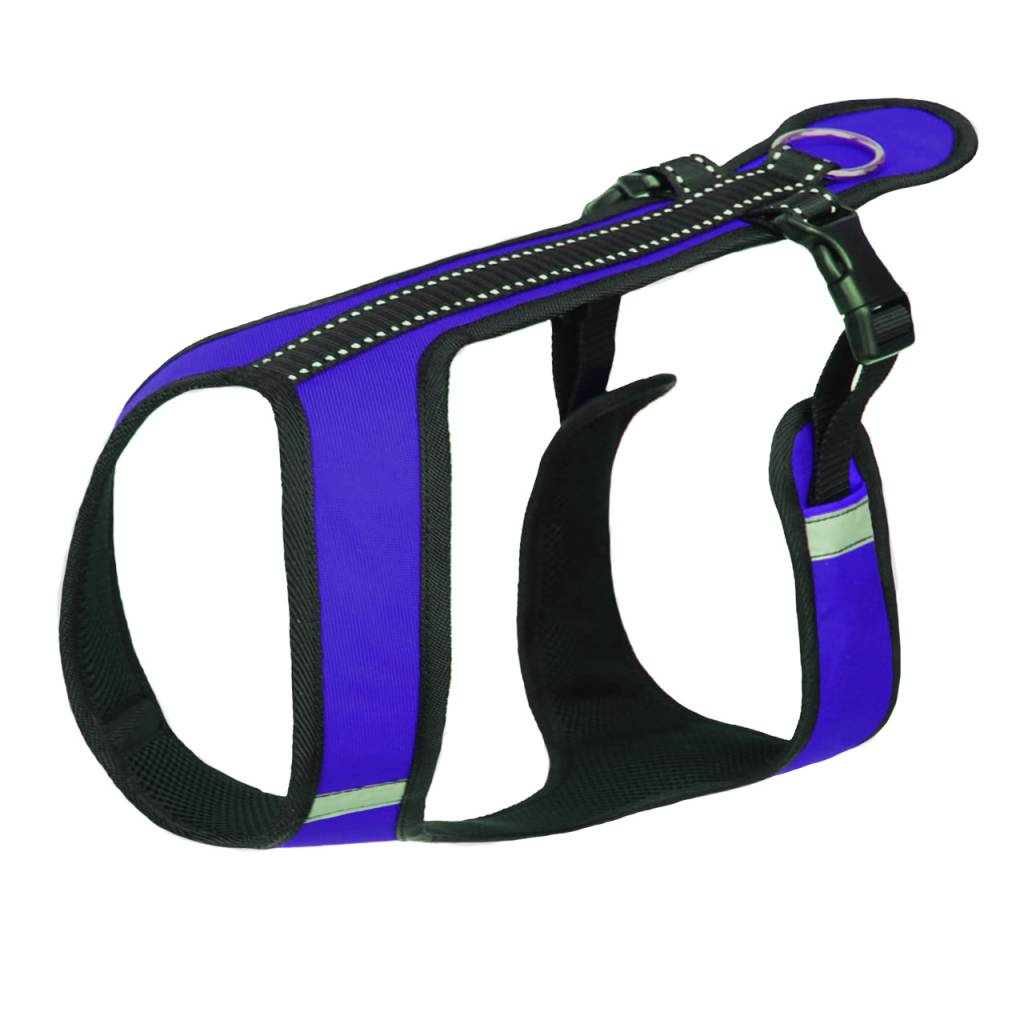 Northern Howl Northern Howl Canicross Sport Harness in blue with Reflectors