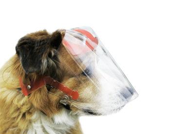 Optivizor Eye Protection