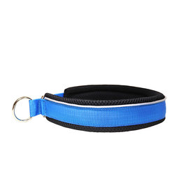 Northern Howl Martingale Training Dog Collar-blue/black
