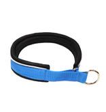 Northern Howl Martingale Training Dog Collar-blue/black