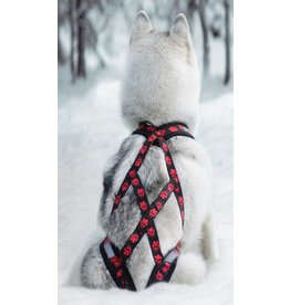 Weight Pulling Dog Harness, X - Back Style - red Paws