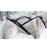 X-Back harnais pour chien pour le vélo, ski-joering, scooter, traîneau