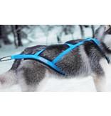 Northern Howl Northern Howl X-Back harnais pour chien pour le vélo, ski-joering, scooter, traîneau, Color bleu