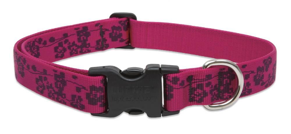 Lupinepet Hundehalsband Plum Blossum / Breite 25mm
