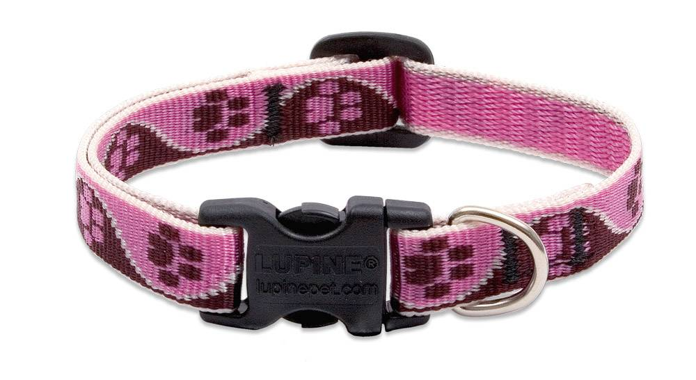 Lupinepet Hundehalsband Tickled Pink / Breite 12mm
