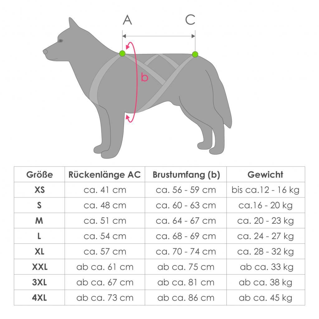 X-Back harnais pour chien pour le vélo, ski-joering, scooter, traîneau - en noir avec un rembourrage bleu