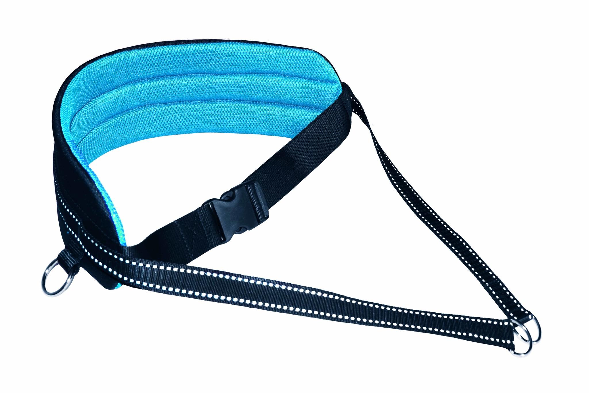 LasaLine Mains-libres chien marchant Courir jogging Ceinture -bleu clair/noir - FBA