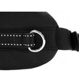 Handsfree Dog Walking Running Jogging Waist Belt -  dark bluee Pedding/ black with reflectors - FBA