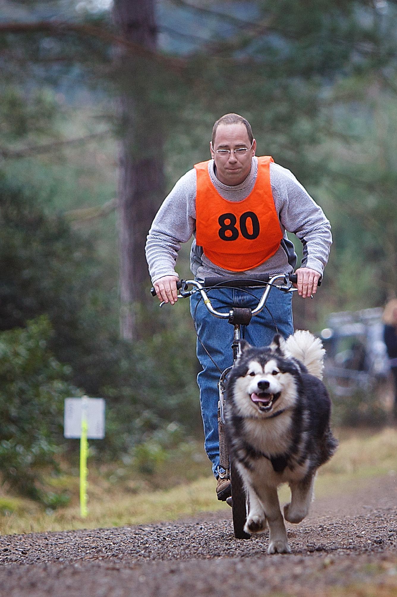 Pawtrekker Pawtrekker Classic Dogscooter  de chien
