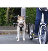 Pawtrekker Pawtrekker Dog Scooter Sidewalker System