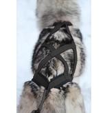 Northern Howl Hunde Zuggeschirr X-Back Schwarz für Zughundesport - Copy