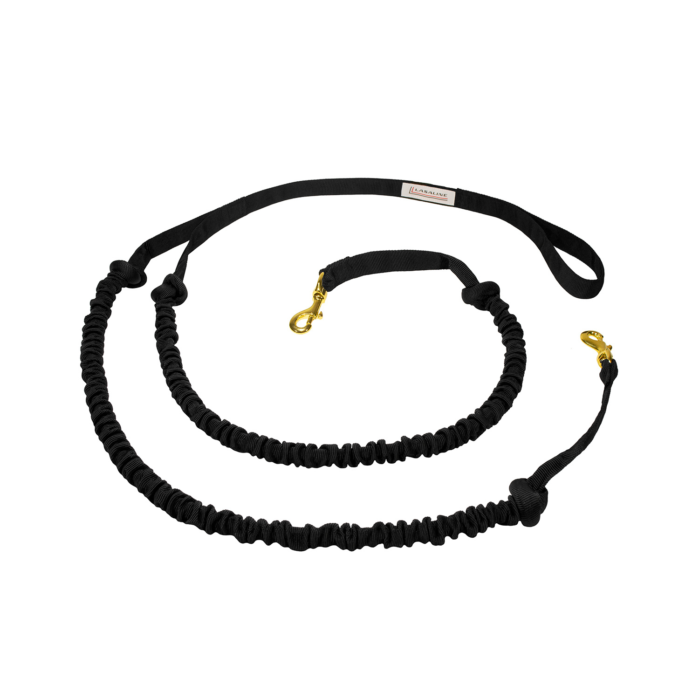 LASALINE LASALINE Laisse double traction avec amortisseur intégré, pour 2 chiens , noir