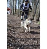 LASALINE-FBA LasaLine Hunde Zuggeschirr X Back Style inkl.  Zug-Jöringleine für Canicross Bike- Ski-Jöring Scooter Schlitten - Schwarz-Neongelb
