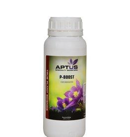 Aptus P-Boost