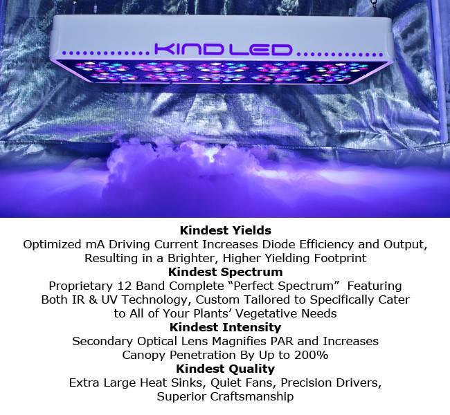 Kind K3 L600 Vegetativ