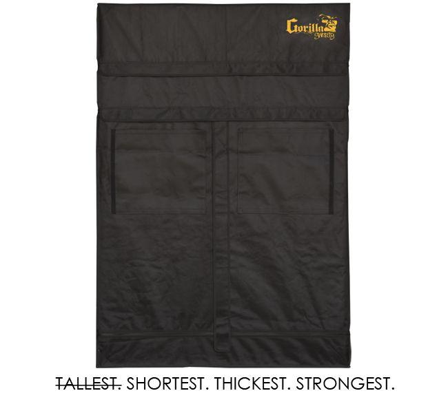 Gorilla Shorty 61x122cm
