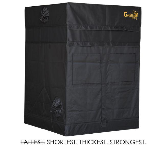Gorilla Shorty 122x122cm