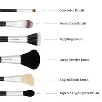 Boozyshop 6 pc Classic Starter Face Makeup Brush Set