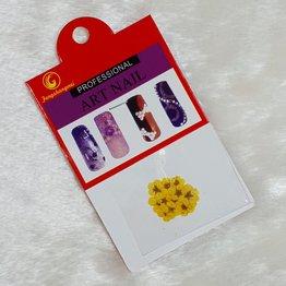 Nail Art Trockenblumen